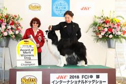 2018.03.04     ココタ  ショー・チャンピオン完成!
